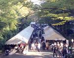 【武蔵大学】11月4日(土)・5日(日)に第65回白雉祭(しらきじさい)を開催