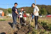 実習農場で収穫の様子.jpg