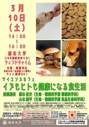 180310_配付チラシ.jpg