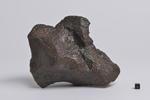 岐阜市長良で発見された鉄隕石、「長良隕石」と命名 -- 岐阜聖徳学園大学で記者発表を実施 --