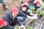 成蹊大学経済学部 経済地理ゼミナールの2018年度課題解決型授業がキックオフ -- JA土浦や株式会社アトレ協力の下、耕作放棄地を再生した体験農園での農作業を体験