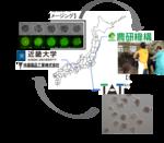 牛の良好受精卵の選別に成功-牛受精卵の染色体異常を生きたまま見分ける技術を開発-【東京農工大学・近畿大学・扶桑薬品工業株式会社・農研機構】