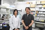 DNA修復タンパク質RAD52がDNAと結合した立体構造を世界で初めて解明~RAD52に作用する新規のがん治療薬開発への貢献に期待 -- 明星大学
