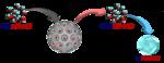 関西大学が、空気中の湿気を集め、液体状態の水に変化させる、省エネルギー材料''スマートゲル''を開発!◆従来の原理とは全く異なる除湿システムで快適空間を創出!◆~関西大学化学生命工学部・宮田隆志研究室とシャープ株式会社による共同研究~