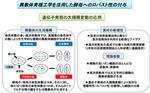 崇城大学生物生命学部の原島俊教授と浴野圭輔准教授の研究がNEDOプロジェクトに採択 -- 新視点のゲノム操作により、これまでにない酵母菌を創る
