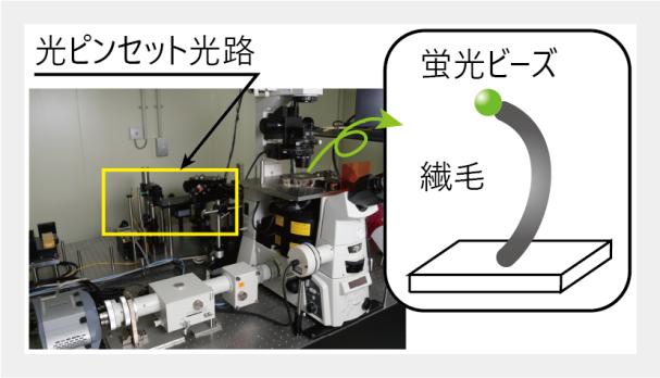 3D位置検出顕微鏡