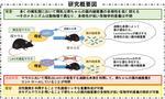 母乳が赤ちゃんの腸内細菌叢を制御する機構の解明 -- 過酸化水素が乳酸菌を増やす!? -- 【東京農工大学・東北大学・理化学研究所】