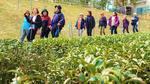 大阪国際大学・短期大学部地域協働センターが「南山城村ウォーキングコース」プロジェクトを展開 -- 景観を楽しめる自然豊かなコースを観光資源として活用