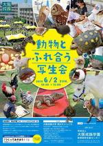 大阪成蹊大学の構内に移動動物園を1日限定オープン、「動物とふれ合う写生会」を開催します。