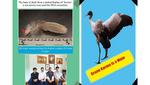 ブータン王国で3年間性別がわからなかった国民的オグロヅル個体 「カルマ」 の性別を日本チームが染色体マーカーで明らかに -- ブータン王国で宗教的にも重要な絶滅危惧種オグロヅルの保全に生かす研究成果