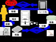 【図1】再生医療製品の品質管理法.png