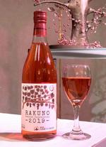 酪農学園大学オリジナルワイン2019が完成 -- 完成報告会を開催
