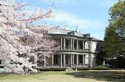 本館と桜.jpg