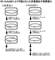 image200227_02.png