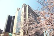 本館と桜(高解像度).jpg