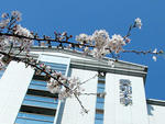 愛知大学法科大学院が令和2年の司法試験で全国1位となる合格率77.78%