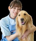 ヤマザキ動物看護専門職短期大学が渋谷区と協働で「ペットと新型コロナウイルス感染症について」のガイドラインを作成しました