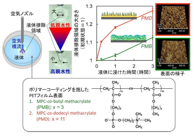 生体接触型医療機器コーティング材料の新しい評価法 -- ポリマーコーティングの2段階の水和挙動を簡単に検出 --