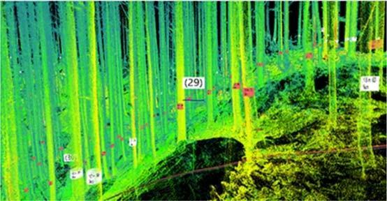 近畿大学と近畿中国森林管理局との連携協力協定締結について