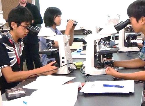 """海外の大学を志望する中学高校生対象 -- 英語で科学を学ぶ""""Musashi Temple RED Programs""""2017年度説明会を4月26日・29日に開催 -- 武蔵学園"""