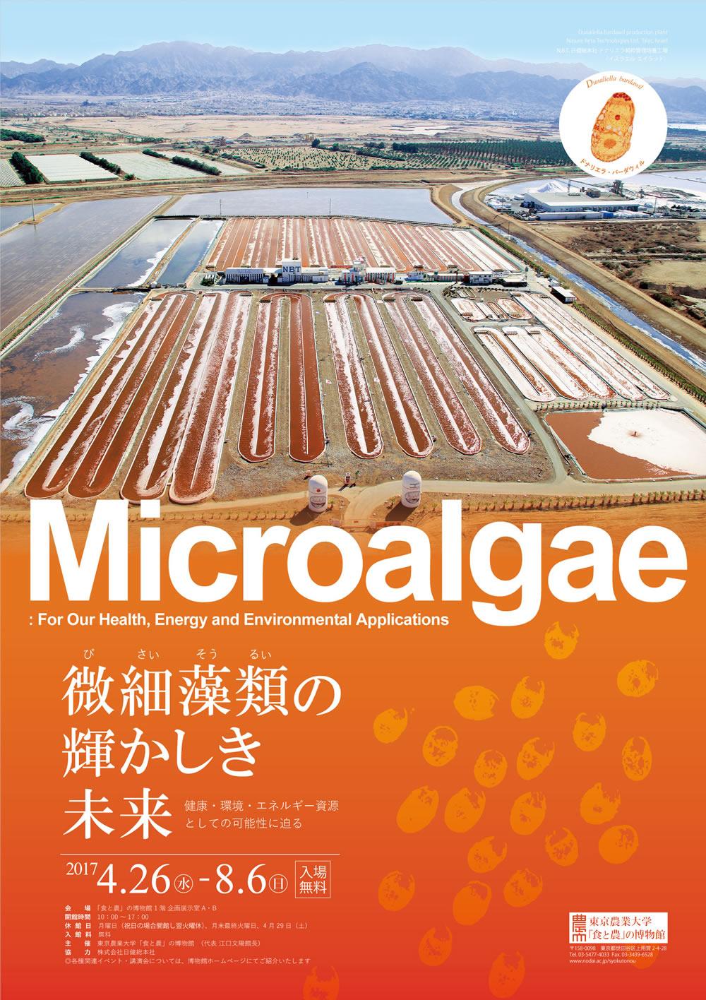 「微細藻類(びさいそうるい)の輝かしき未来」 -- 東京農大「食と農」の博物館 特別展示開催