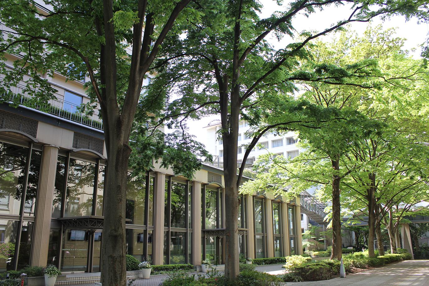 【武蔵大学】「小規模だが評価できる大学」で全国2位に -- 全国684進学校の進路指導教諭から高い評価を獲得
