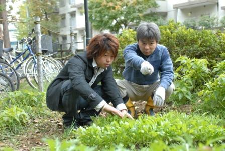 """究極の「地産地消」、""""畑(はたけ)ゼミ""""の新たな取り組み――東京経済大学のキャンパスで収穫したじゃがいもを学食で提供、メニューに"""