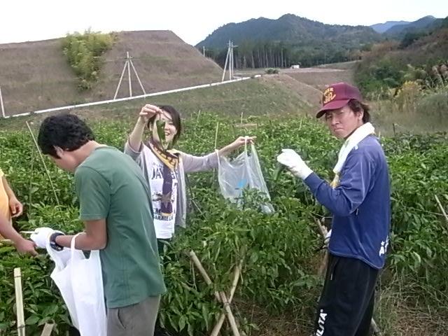 桃山学院大学の地域貢献プロジェクト――学生らが和泉市小川東農業団地およびその周辺で山林整備ボランティアを実施