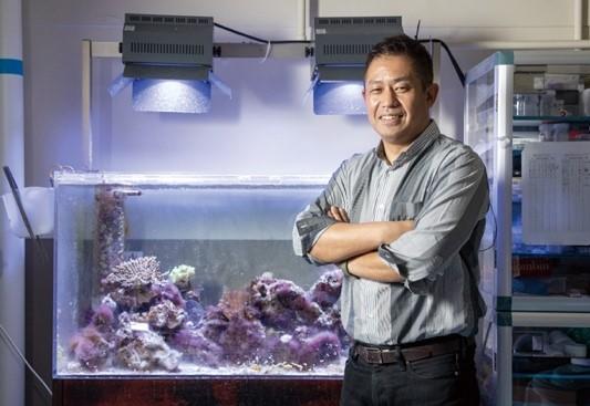 ◆関西大学サンゴ群集再生技術研究会が地球環境を守るクラウドファンディングに挑戦◆再生医療技術を活用したサンゴ礁再生プロジェクト