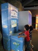 メディア学部と新江ノ島水族館の共同研究を「深海展」に展示!──東京工科大学