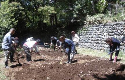 経済を学ぶ大学で野菜づくり!?――東京経済大学の学生が夏野菜栽培に向けて、国分寺キャンパスで畑の土づくり