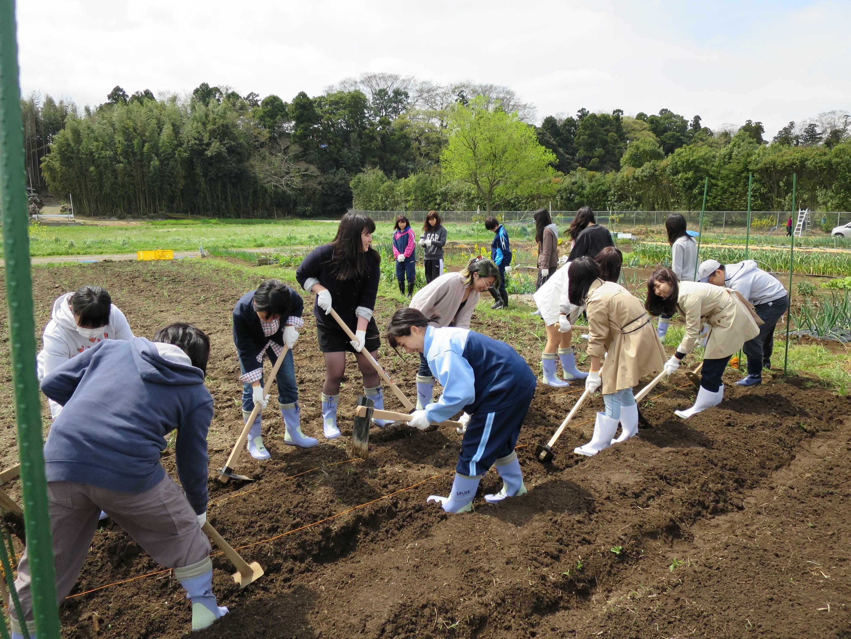 食を通じてアクティブラーニング!  -- 川村学園女子大学