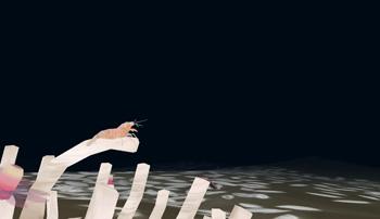 東京工科大学メディア学部アクアプロジェクトが新江ノ島水族館と共同開発した「aqua dive」が、2月3日から体験可能に