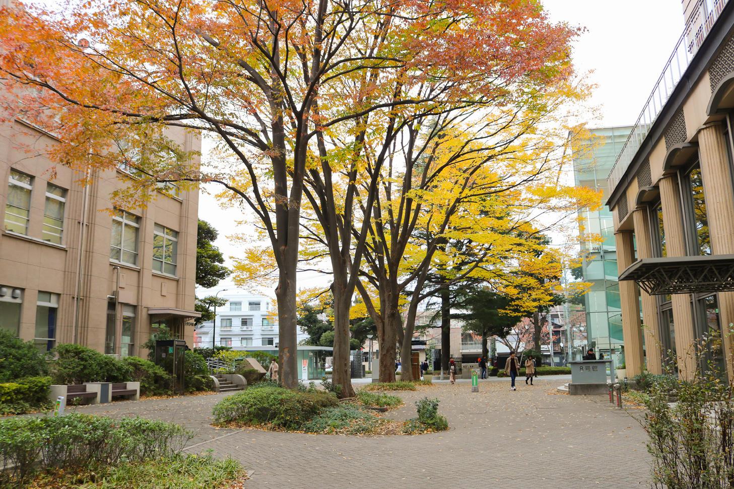 【武蔵大学】第56回土曜講座を開催(武蔵大学・大学同窓会 共催)