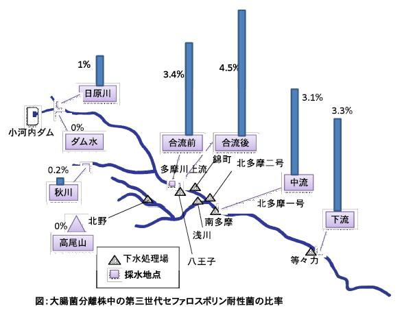 都市河川における「薬剤耐性菌」の存在実態を、多摩川の現地調査で明らかに――東京工科大学応用生物学部
