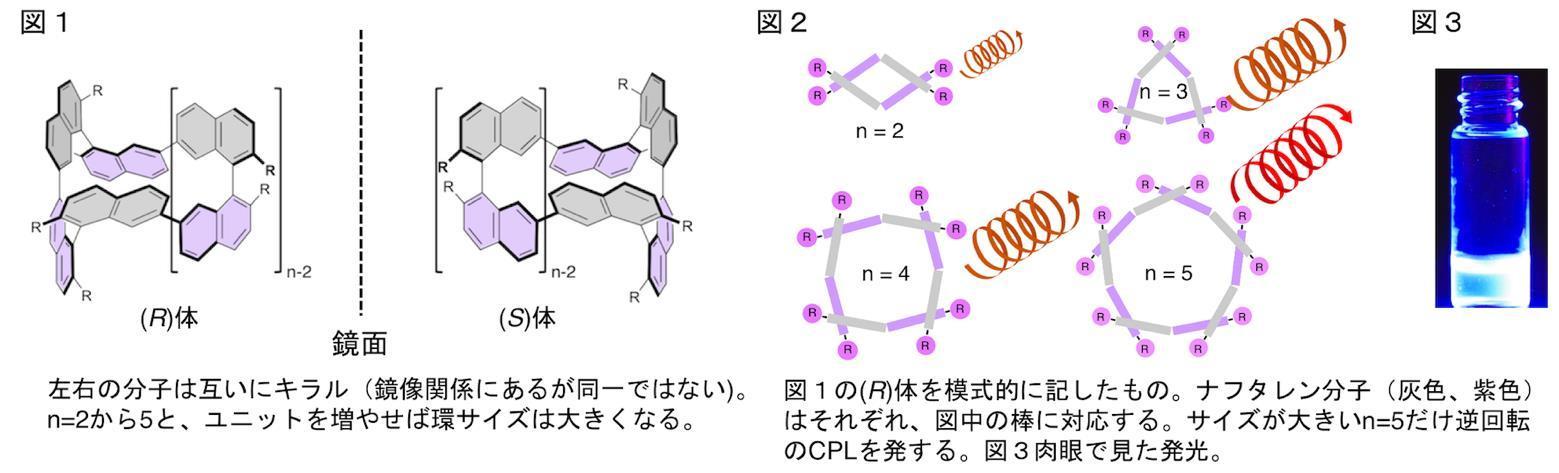 分子の大きさで円偏光発光の回転方向を制御できる環状キラル色素を開発 -- 北里大学