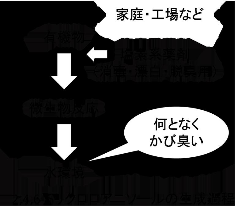 都市の水辺の「カビ臭」原因物質を初めて特定 ~東京・多摩地域の現地調査から明らかに――東京工科大学
