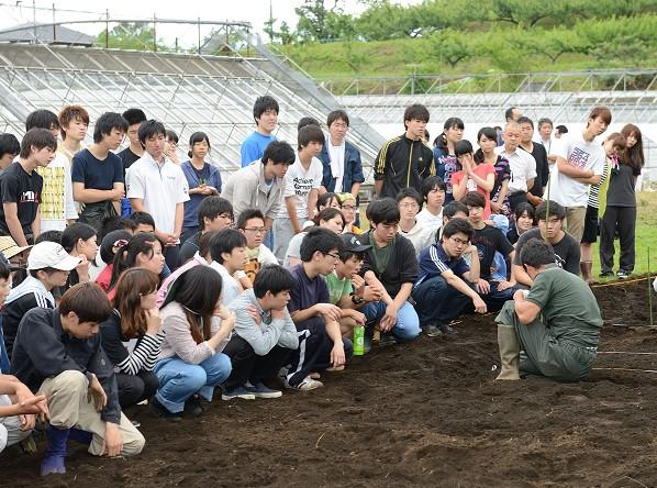 2,000本の「だいこんアート」がオープンキャンパスに出現 -- 東京農業大学厚木キャンパス