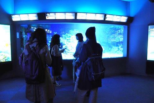 フェリス女学院大学音楽学部の学生が新江ノ島水族館「ナイトワンダーアクアリウム2017~満天の星降る水族館~Part3」のBGM選曲に協力 -- アウトリーチ活動の一環として