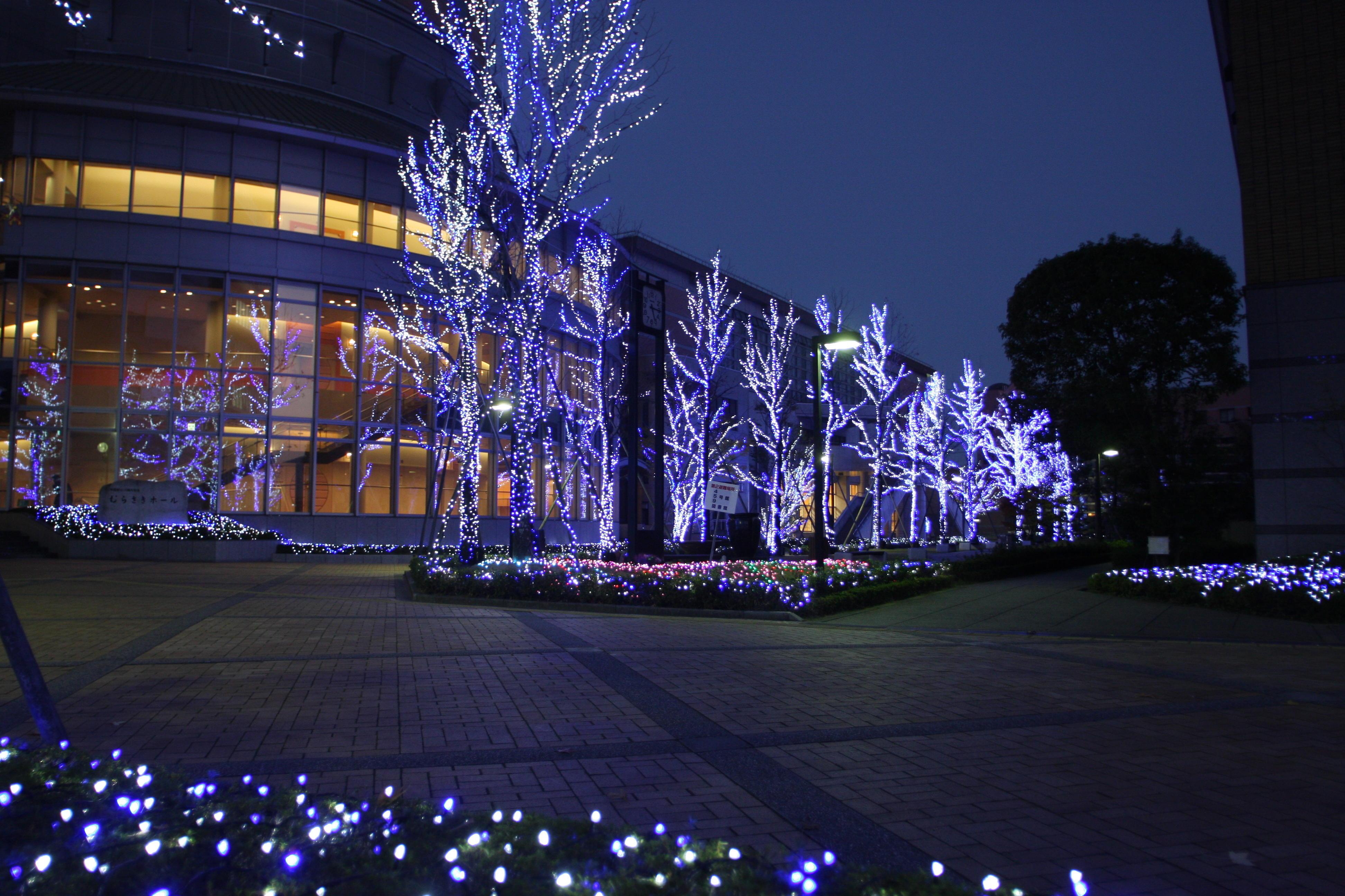 徳島文理大学が12月から徳島・香川の両キャンパスでイルミネーションを点灯 -- 2018年2月14日まで実施予定