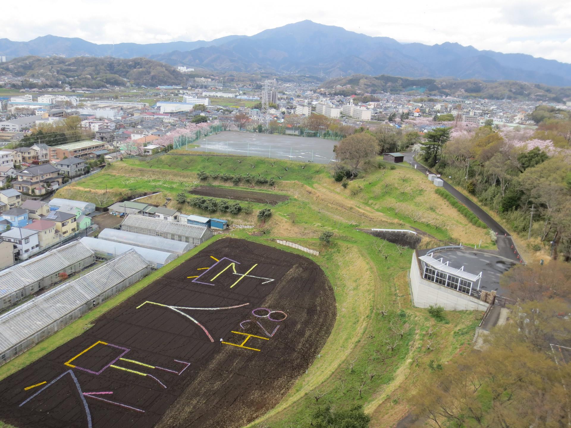 「6000株の花アート」が新入生をお迎え -- 東京農業大学厚木キャンパス