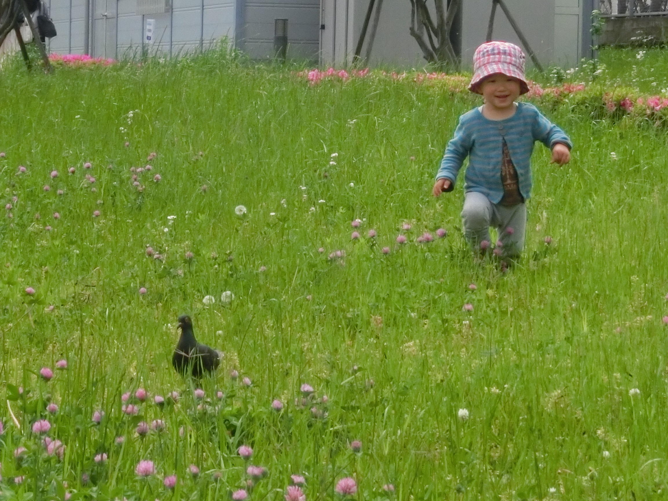 東京家政大学板橋キャンパスの乳幼児施設が2019年度から新たなスタート -- ナースリールームは板橋区の認可保育所に、みどりケ丘幼稚園は認定こども園に