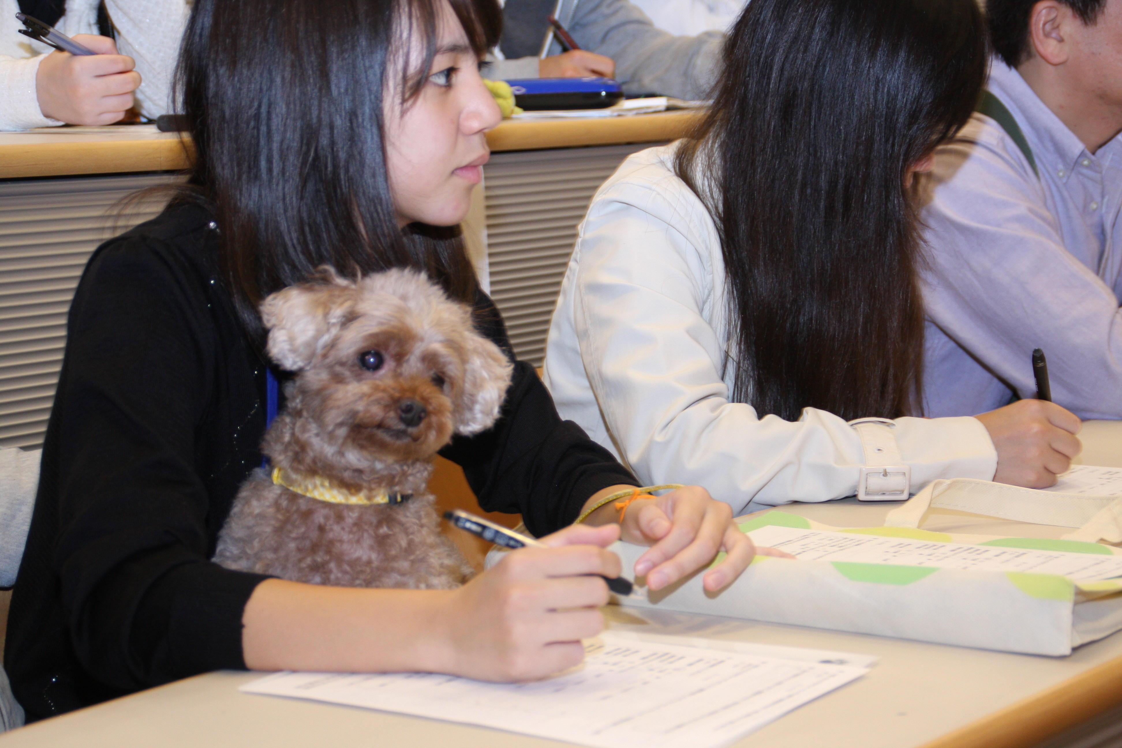 ~愛犬と一緒に参加して健康について学ぼう! 公開講座「ヒトがイヌと歩くということ」及びドッグ・ウォーキングフェスティバル開催のお知らせ