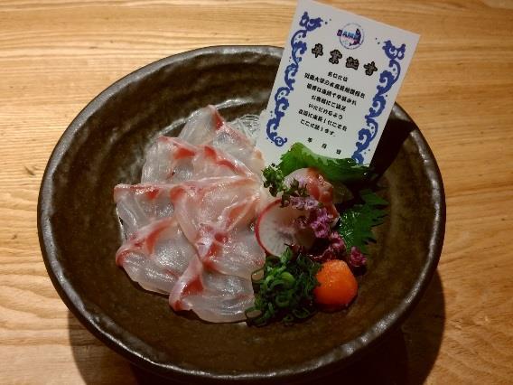 高級魚「マハタ」の特別メニューを期間限定で提供 4月26日から近畿大学水産研究所大阪店・銀座店にて