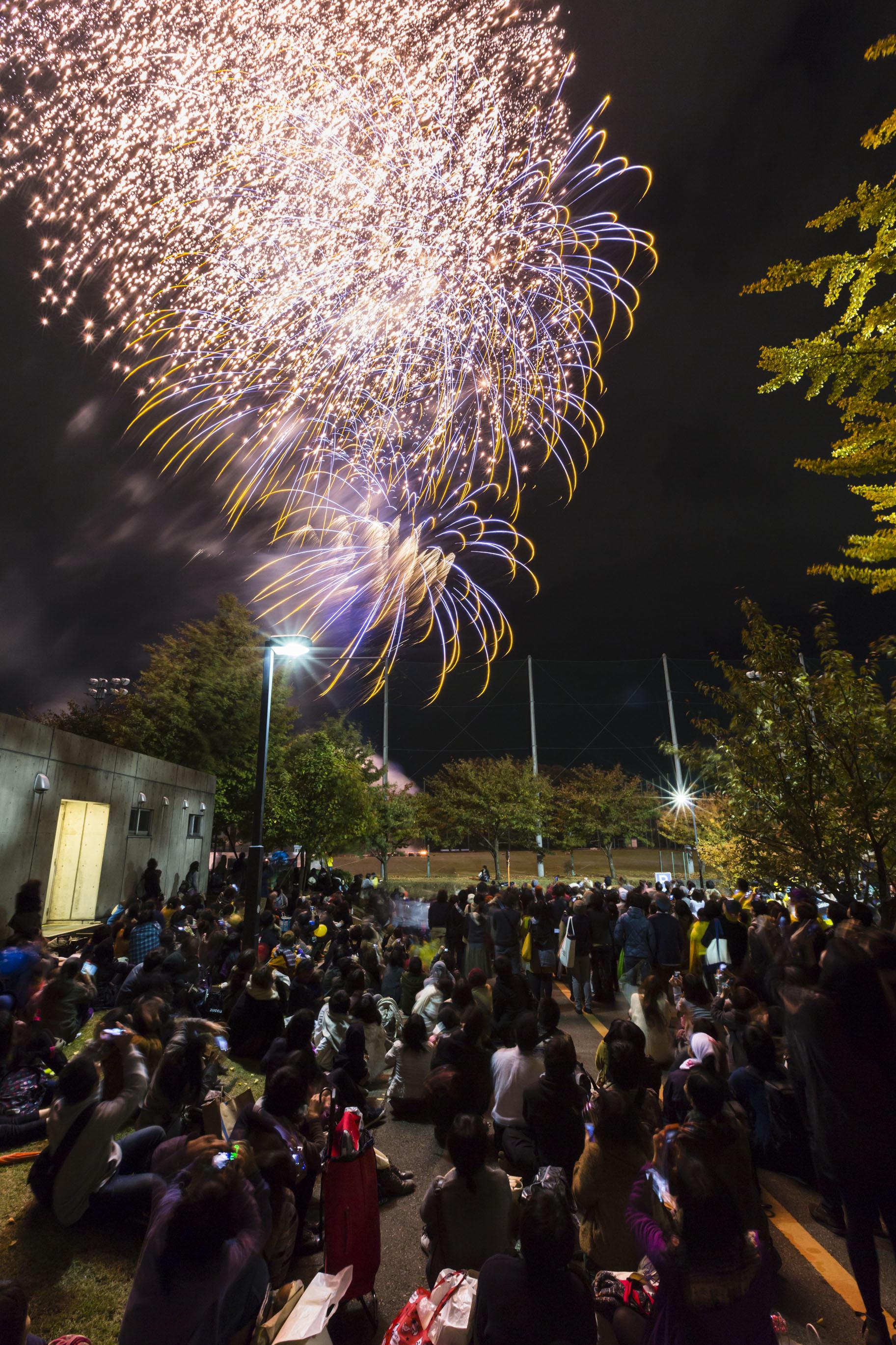 個性豊かな作品に出合える3日間。多摩美術大学の秋の祭典「芸術祭」。