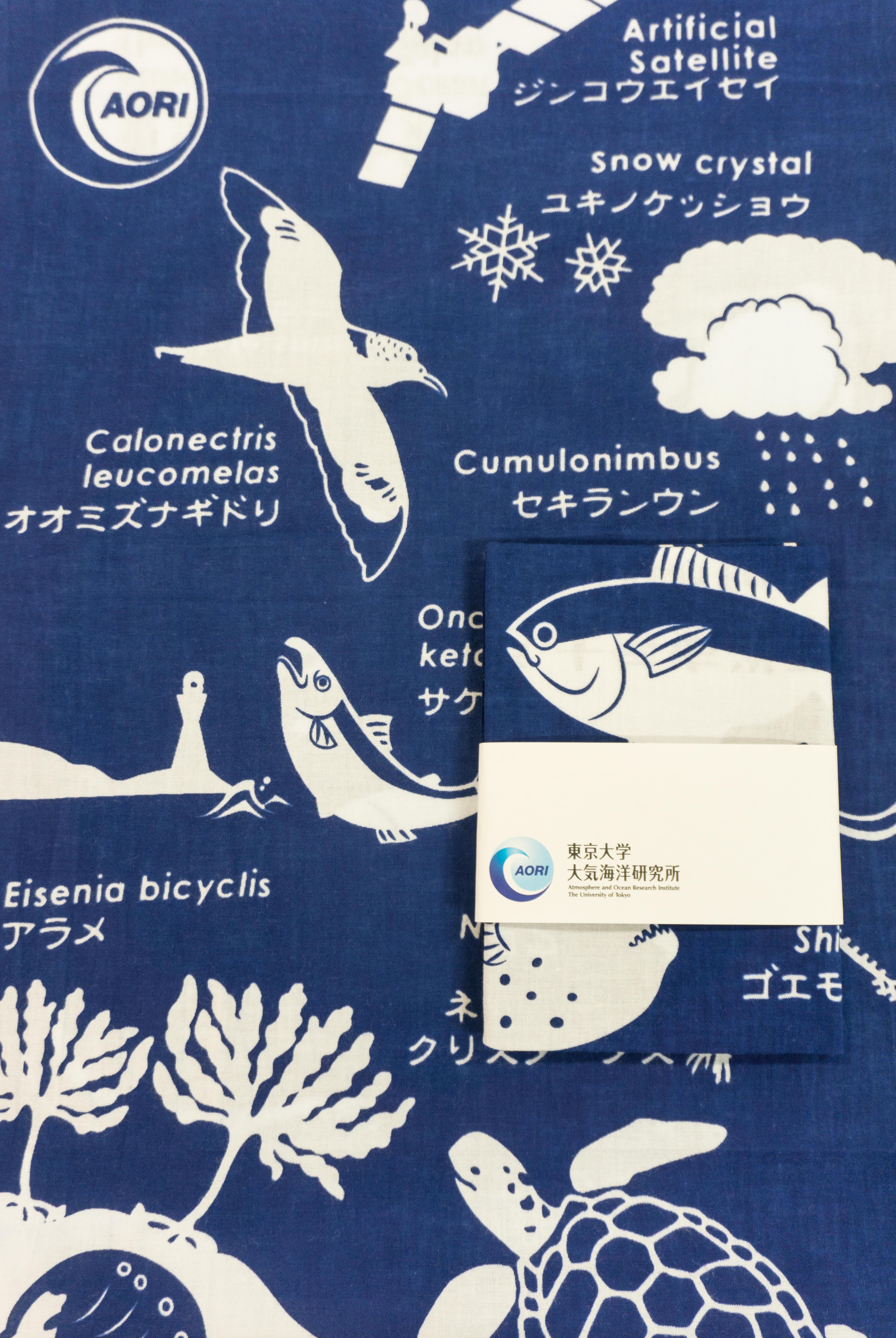 大気海洋研究所オリジナルてぬぐいを5/1よりオンラインで限定販売 -- 東京大学