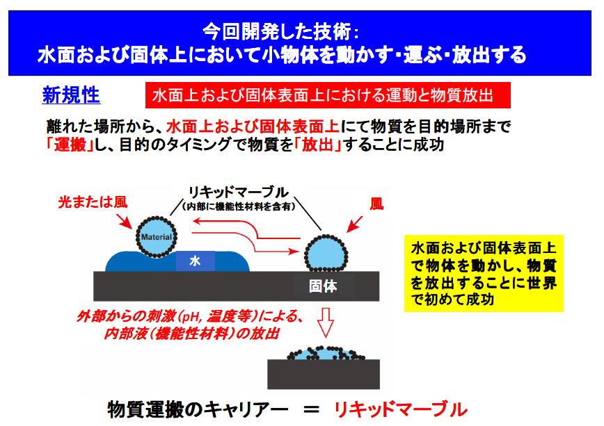 水面はスイスイ 固体面はコロコロ 小物体を''水陸両用''で運搬する技術を開発 -- 大阪工業大学