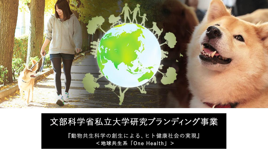 麻布大学 文部科学省私立大学研究ブランディング事業「動物共生科学の創生による、ヒト健康社会の実現(地球共生系「One Health」)」の研究内容を『分かりやすく』パネル展示します